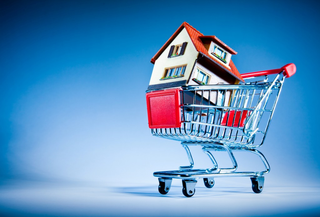 house-in-a-shopping-cart
