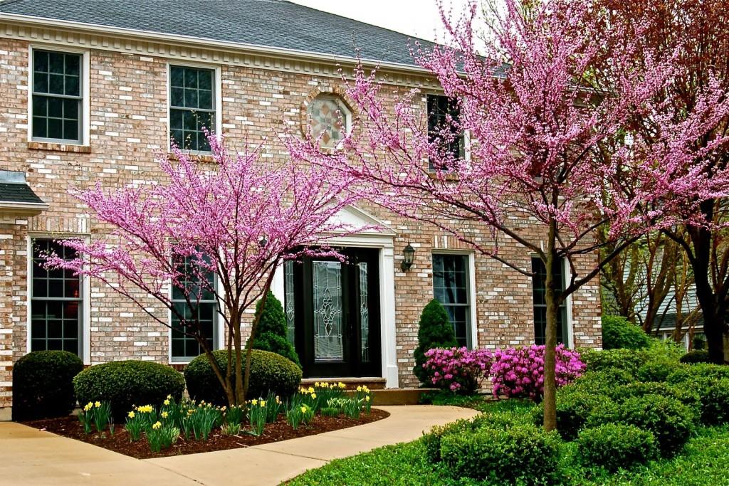 spring-house