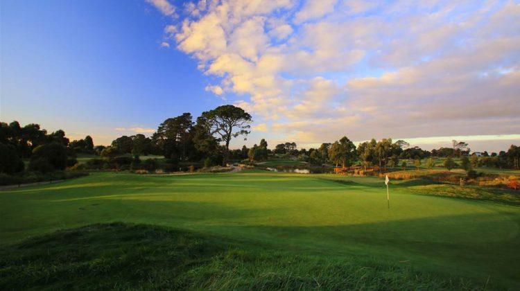 Pristine golf course grass